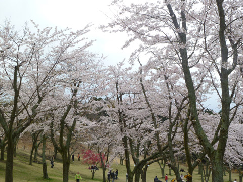 omuroyama